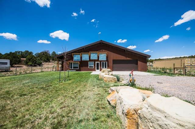 4783 S 21 1/2 Road, Glade Park, CO 81523 (MLS #20202706) :: The Grand Junction Group with Keller Williams Colorado West LLC