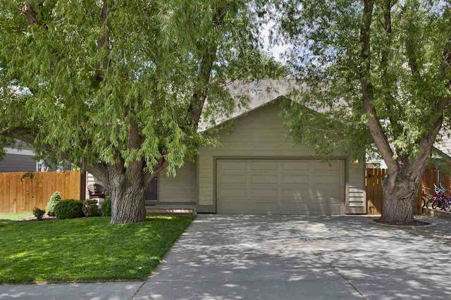 287 Birch Court, Silt, CO 81652 (MLS #20202742) :: The Christi Reece Group