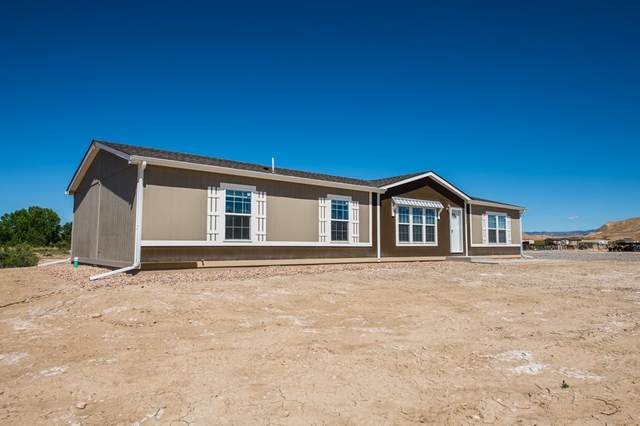 1711 Oasis Drive, Mack, CO 81525 (MLS #20202761) :: The Grand Junction Group with Keller Williams Colorado West LLC