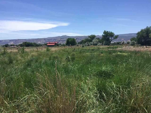 1851 K Road, Fruita, CO 81521 (MLS #20202802) :: The Christi Reece Group