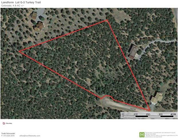 125 Turkey Trail, Ridgway, CO 81432 (MLS #20202824) :: The Christi Reece Group