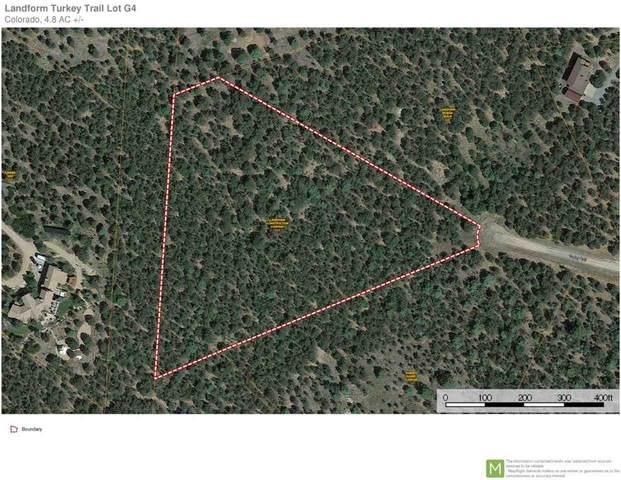 132 Turkey Trail, Ridgway, CO 81432 (MLS #20202825) :: The Christi Reece Group