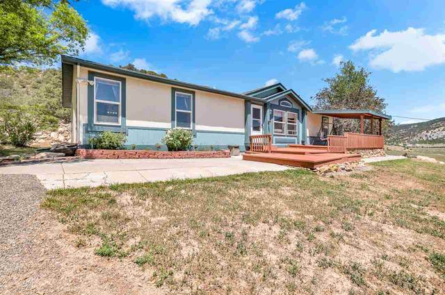1205 County Road 252, Rifle, CO 81650 (MLS #20202847) :: The Grand Junction Group with Keller Williams Colorado West LLC
