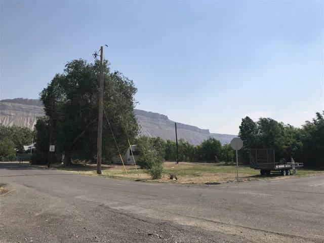 702 37 1/10 Road, Palisade, CO 81526 (MLS #20202861) :: CENTURY 21 CapRock Real Estate