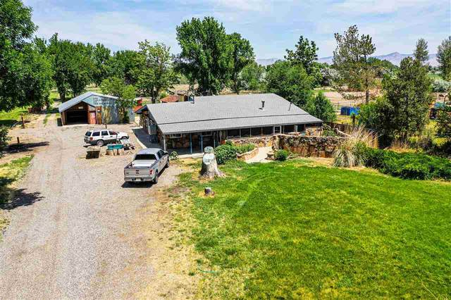 1862 J Road, Fruita, CO 81521 (MLS #20202942) :: The Grand Junction Group with Keller Williams Colorado West LLC