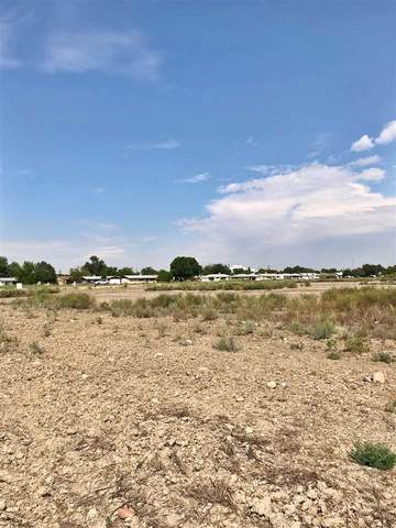 450 28 Road, Grand Junction, CO 81501 (MLS #20202983) :: The Grand Junction Group with Keller Williams Colorado West LLC