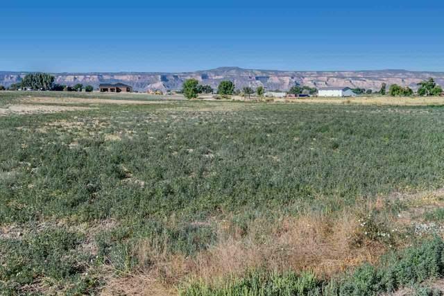 2148 Rosebud Court, Grand Junction, CO 81505 (MLS #20203041) :: The Danny Kuta Team