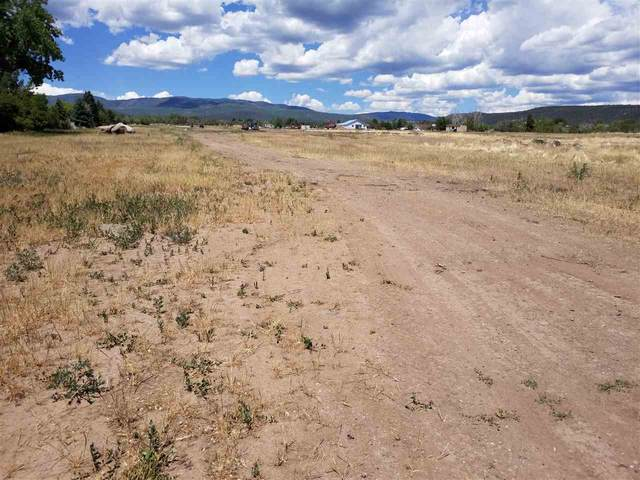 TBD NE Fir Ave, Cedaredge, CO 81413 (MLS #20203075) :: The Grand Junction Group with Keller Williams Colorado West LLC