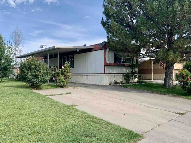 541 1/2 Willow Road, Grand Junction, CO 81501 (MLS #20203091) :: CENTURY 21 CapRock Real Estate
