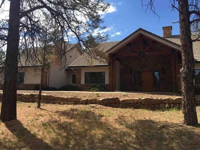 98 Bear Cub Drive, Ridgway, CO 81432 (MLS #20203122) :: The Christi Reece Group