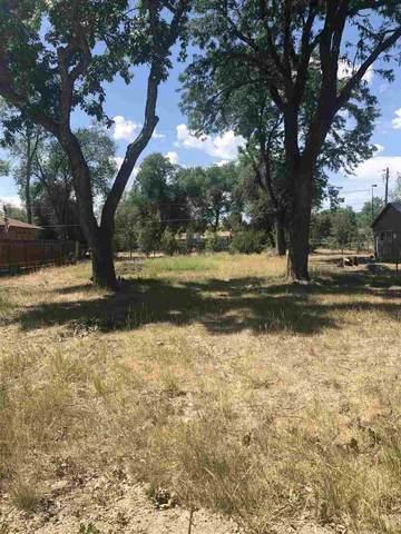 2903 Sandra Avenue, Grand Junction, CO 81504 (MLS #20203139) :: The Christi Reece Group