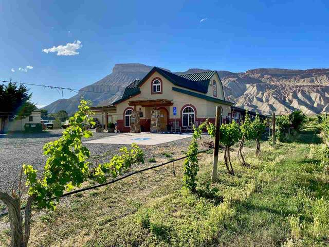 3572 G Road, Palisade, CO 81526 (MLS #20203146) :: The Christi Reece Group