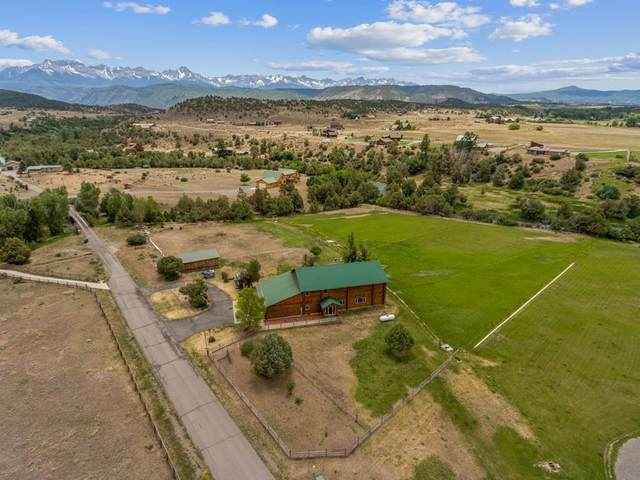 101 River Lane, Ridgway, CO 81432 (MLS #20203231) :: The Kimbrough Team | RE/MAX 4000