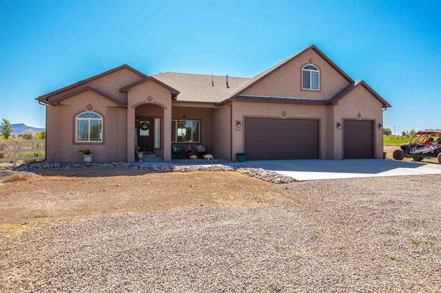 1460 18 Road, Fruita, CO 81521 (MLS #20203240) :: The Christi Reece Group