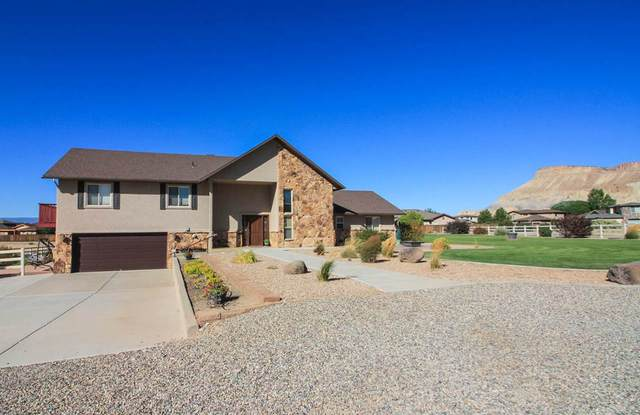 807 Shiraz Drive, Palisade, CO 81526 (MLS #20203280) :: The Grand Junction Group with Keller Williams Colorado West LLC