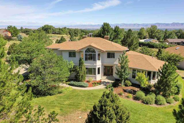 2012 Bison Court, Grand Junction, CO 81507 (MLS #20203282) :: The Christi Reece Group