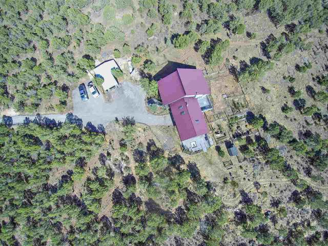 49991 Eagles Way, Mesa, CO 81643 (MLS #20203295) :: CENTURY 21 CapRock Real Estate