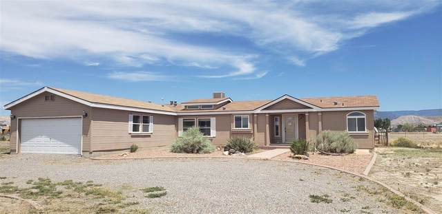 100 Cutting Court, Whitewater, CO 81527 (MLS #20203381) :: The Grand Junction Group with Keller Williams Colorado West LLC