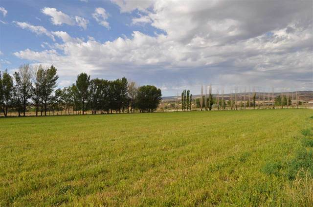 4471 Old Kannah Creek Road, Whitewater, CO 81527 (MLS #20203393) :: The Christi Reece Group