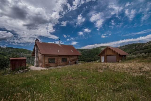22521 Divide Creek Road, Silt, CO 81652 (MLS #20203483) :: Western Slope Real Estate