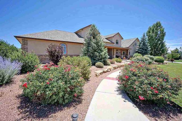 3140 Monte Vista Circle, Montrose, CO 81401 (MLS #20203486) :: The Christi Reece Group