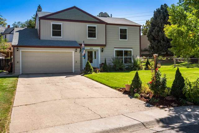 225 Willowbrook Road, Grand Junction, CO 81506 (MLS #20203487) :: The Kimbrough Team | RE/MAX 4000