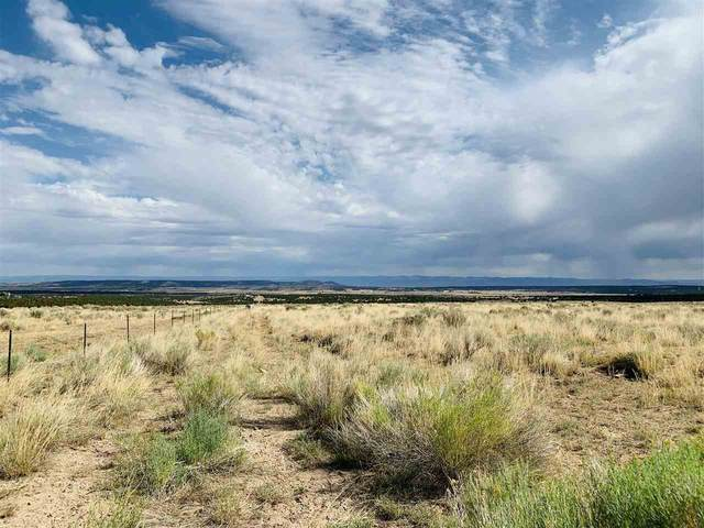 TBD Indian Camp Road, Glade Park, CO 81523 (MLS #20203502) :: The Danny Kuta Team