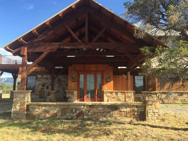 3640 Ponderosa Drive, Ridgway, CO 81432 (MLS #20203523) :: The Kimbrough Team | RE/MAX 4000