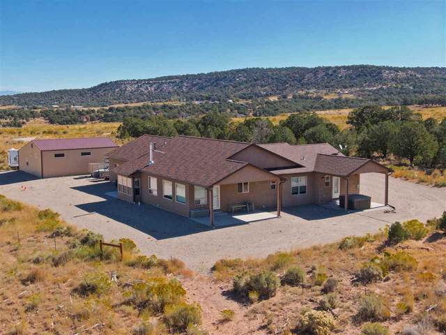 4475 Griffith Lane, Glade Park, CO 81523 (MLS #20203542) :: The Kimbrough Team | RE/MAX 4000