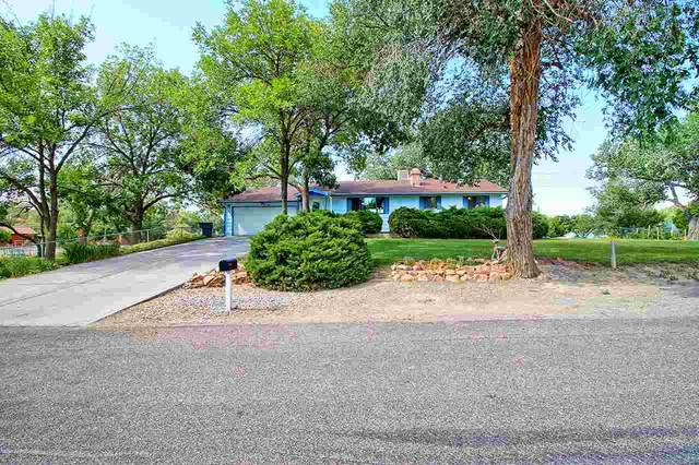 653 Young Street, Grand Junction, CO 81505 (MLS #20203543) :: The Kimbrough Team | RE/MAX 4000