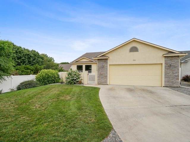 725 Wigeon Drive, Grand Junction, CO 81505 (MLS #20203605) :: The Christi Reece Group