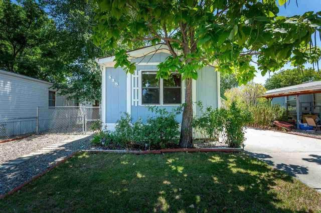 528 Holly Park Drive, Fruita, CO 81521 (MLS #20203615) :: CENTURY 21 CapRock Real Estate