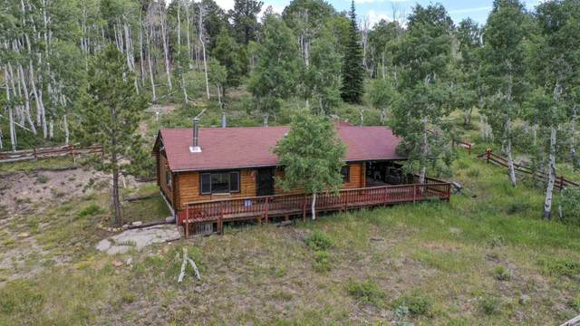 17201 Ponderosa Glade Road, Glade Park, CO 81523 (MLS #20203657) :: The Kimbrough Team | RE/MAX 4000