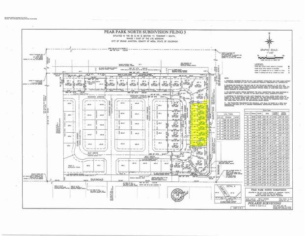 452 Warren Street, Grand Junction, CO 81504 (MLS #20203670) :: Western Slope Real Estate