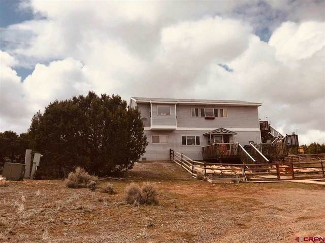 61601 Tres Coyote Street, Montrose, CO 81403 (MLS #20203771) :: Western Slope Real Estate