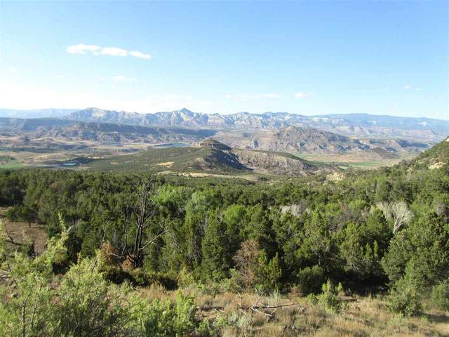 TBD Tbd, Mesa, CO 81643 (MLS #20203788) :: The Grand Junction Group with Keller Williams Colorado West LLC