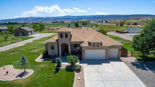 1315 L 7/10 Road, Loma, CO 81524 (MLS #20203791) :: The Danny Kuta Team
