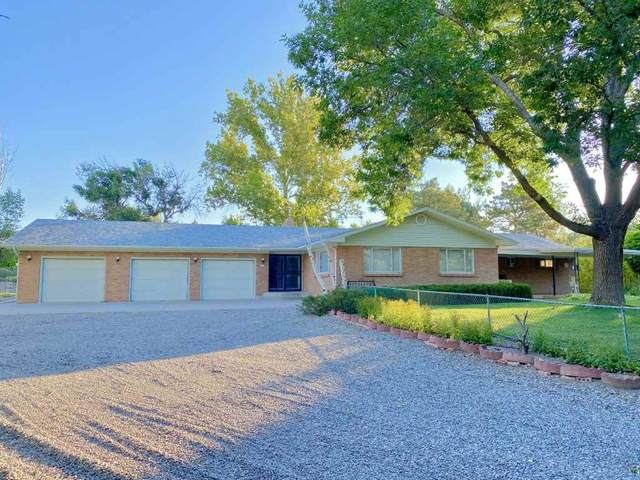 611 Meander Drive, Grand Junction, CO 81505 (MLS #20203801) :: The Kimbrough Team | RE/MAX 4000