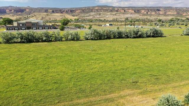 1589 River Road, Fruita, CO 81521 (MLS #20203835) :: The Kimbrough Team | RE/MAX 4000