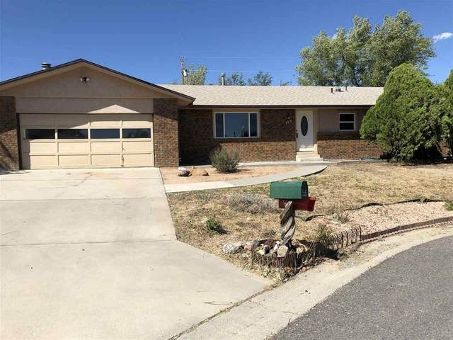 113 Steve Court, Grand Junction, CO 81503 (MLS #20203853) :: CENTURY 21 CapRock Real Estate