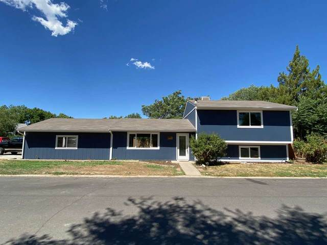295 Dartmouth Lane A, Grand Junction, CO 81503 (MLS #20203884) :: The Danny Kuta Team