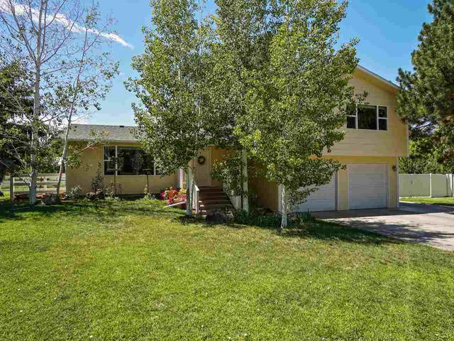 2131 Bryce Court, Grand Junction, CO 81507 (MLS #20203909) :: The Danny Kuta Team