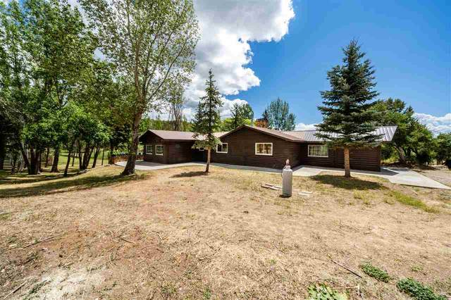 23981 Ute Trail Road, Cedaredge, CO 81413 (MLS #20203914) :: The Grand Junction Group with Keller Williams Colorado West LLC