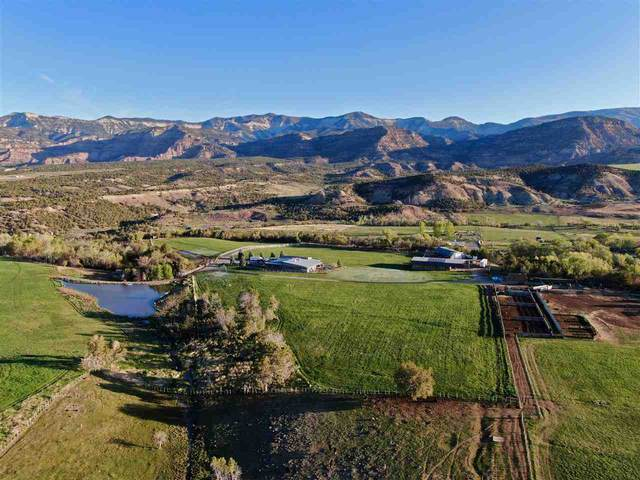 57245 Highway 330, Collbran, CO 81624 (MLS #20203961) :: The Danny Kuta Team