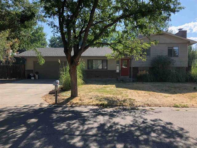 582 Starlight Drive, Grand Junction, CO 81504 (MLS #20203978) :: The Danny Kuta Team