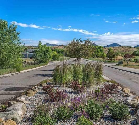 396 Tobiano Lane, Silt, CO 81652 (MLS #20204231) :: CENTURY 21 CapRock Real Estate