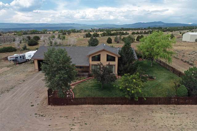 28047 Redlands Mesa Road, Hotchkiss, CO 81419 (MLS #20204317) :: The Kimbrough Team | RE/MAX 4000