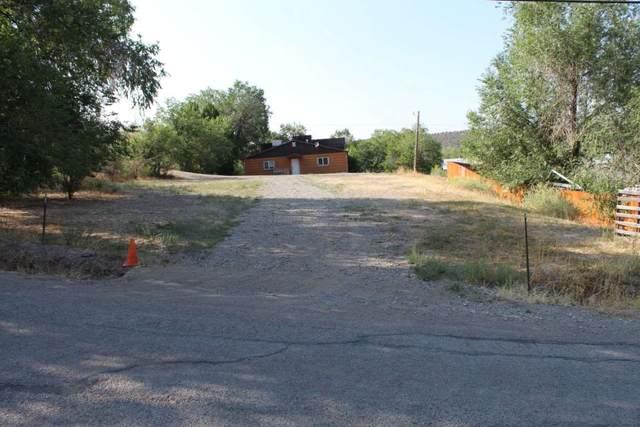 TBD Elm Avenue, Crawford, CO 81415 (MLS #20204343) :: The Danny Kuta Team