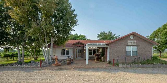 3577 Highway 6&24, Palisade, CO 81526 (MLS #20204348) :: The Grand Junction Group with Keller Williams Colorado West LLC