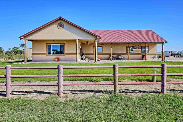 748 R Road, Mack, CO 81525 (MLS #20204481) :: The Kimbrough Team | RE/MAX 4000